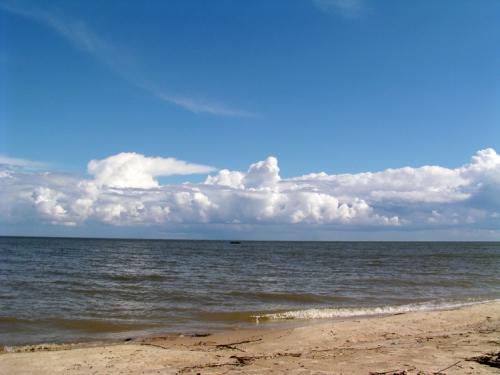 ростове в фото моря азовского
